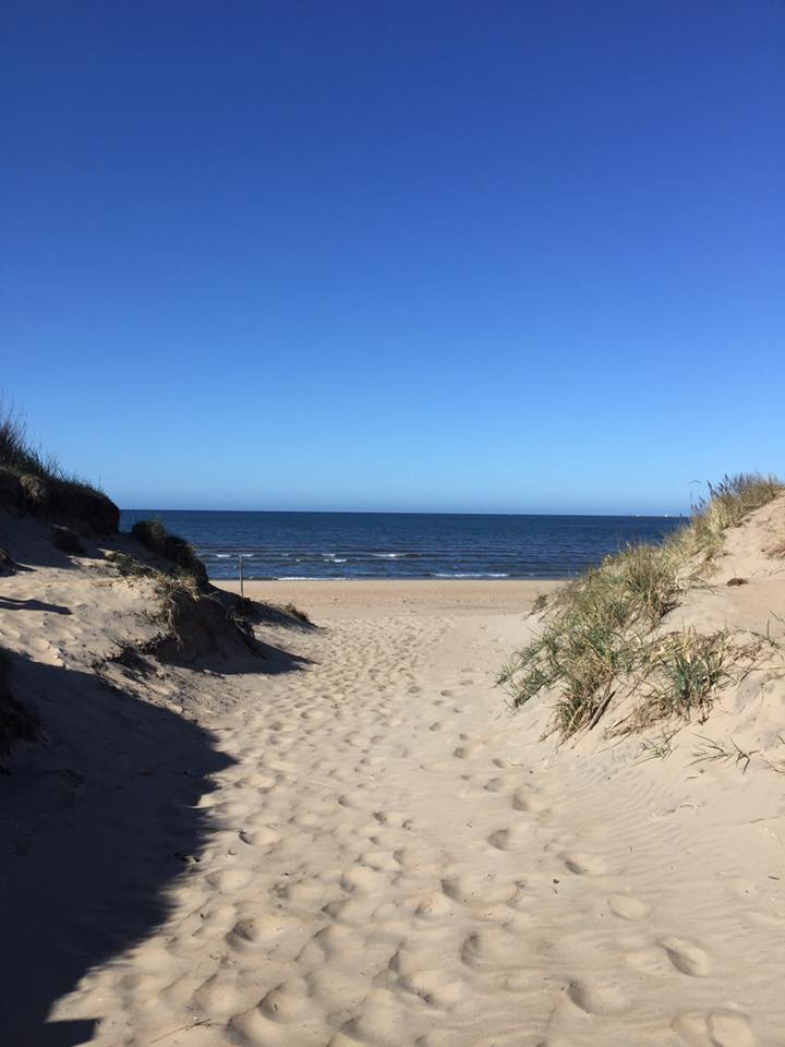 Sanddynor